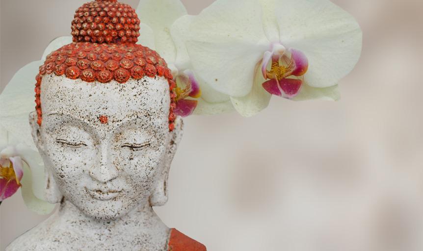Terah Collins statue flower Buddha feng shui