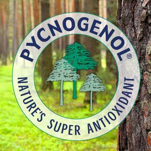 Pycno-300x300