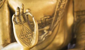 boswellia saves 350 pixels buddha