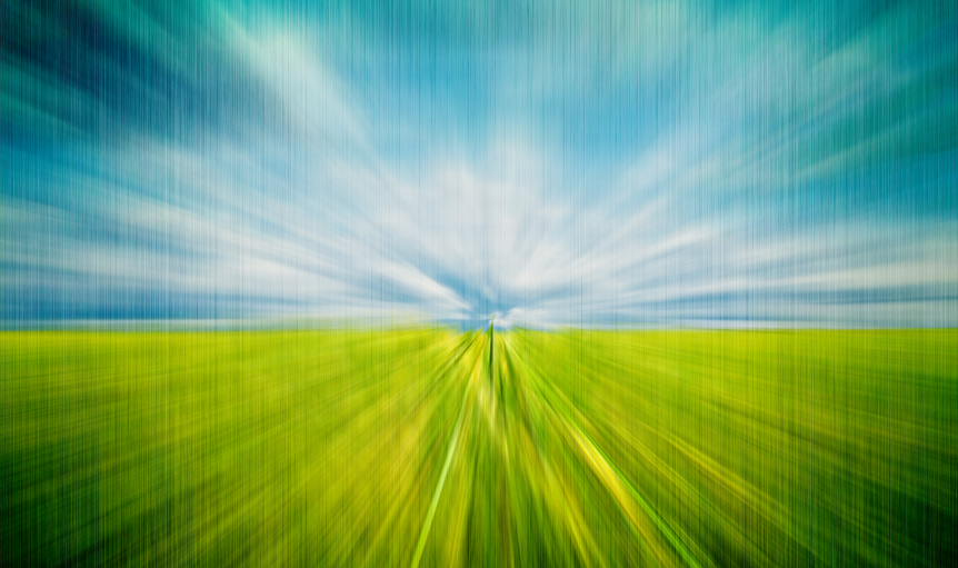 field wheatgrass zoom ron semibold