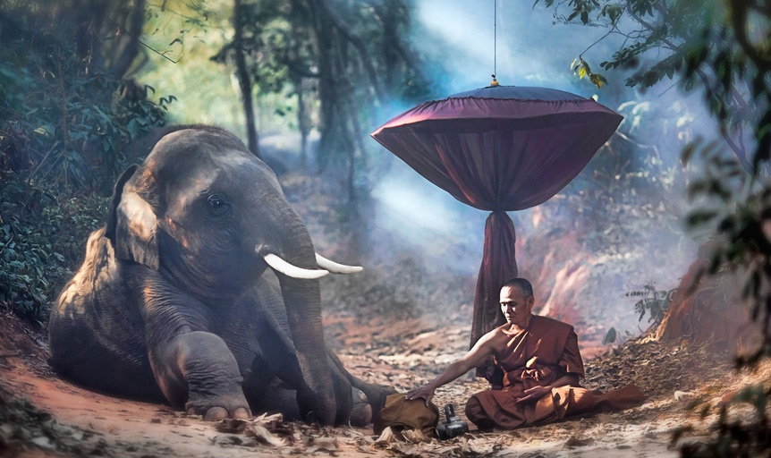 Elephant mahout hammock India smoke Wayne Dyer
