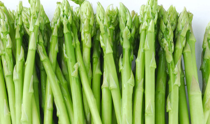 Maypro ETAS asparagus science