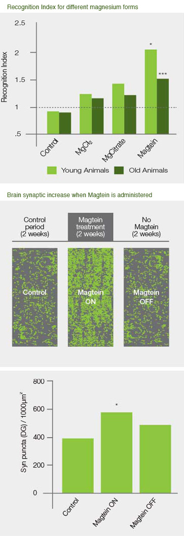 AIDP Magtein charts