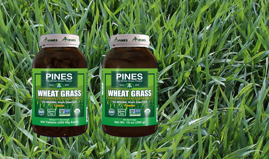 pines wheat grass landing