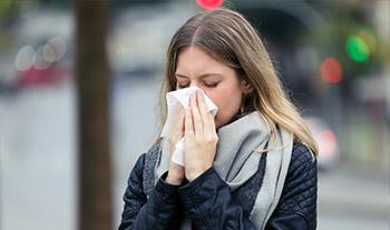Pycnogenol Lamm blow nose immune system