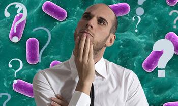 Lactospore bald guy pills purple