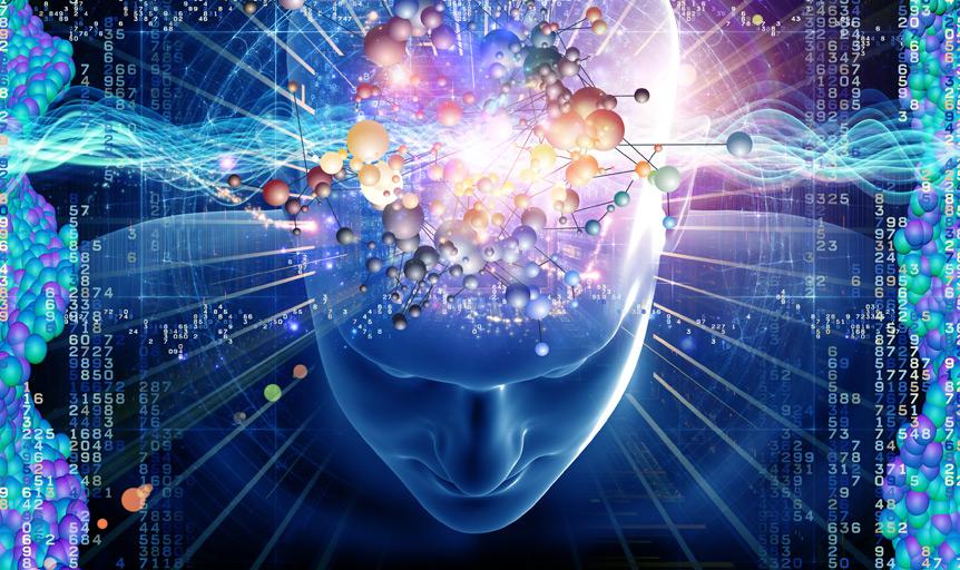 Pycnogenol brain fog